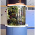 Childrens Hospital Fish Tank