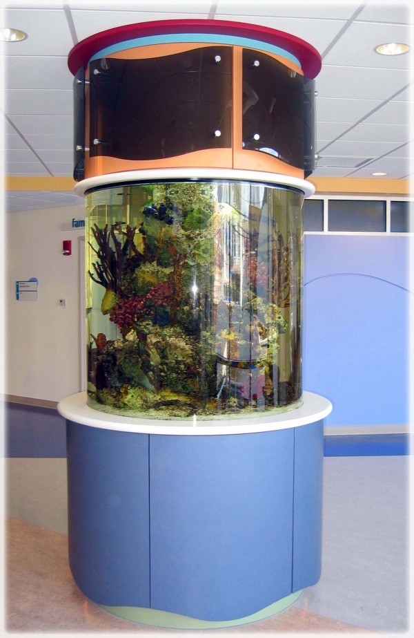 R m manufacturing inc for Childrens fish tank